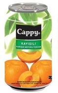 Resim Cappy Kayısılı Meyve Suyu 330 Ml