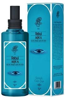Rebul 100 ml Aqua Spreyli Cam Şişe Kolonya ürün resmi