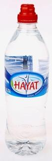 Hayat Doğal Mineralli Su 0,75 lt ürün resmi