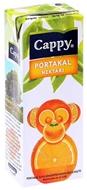 Resim Cappy Portakallı Meyve Suyu 200 Ml