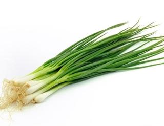 Yeşil Soğan Kg ürün resmi