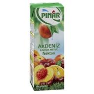 Resim Pınar Meyve Suyu Akdeniz Meyveleri Karışık 200 Ml