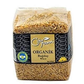 City Farm Organik Bugday 500 Gr ürün resmi