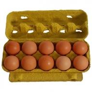 Resim Abant Yumurta Serbest Dolaşım 10 Lu