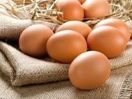 Resim Organik Yumurta Adet