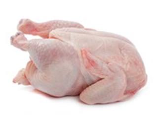 Eray Tavukçuluk- Piliç İri Boy Kg ürün resmi