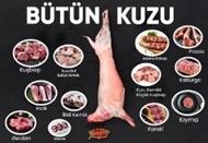 Picture of Bütün Kuzu 20 Kiloluk